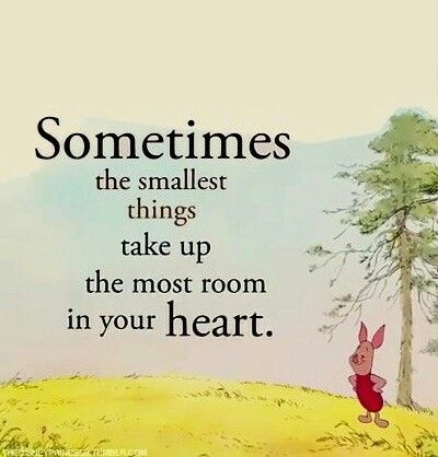 So True One Of My Most Favored Mottos Is Great Things Come In S Adorable Goodreads Quotes