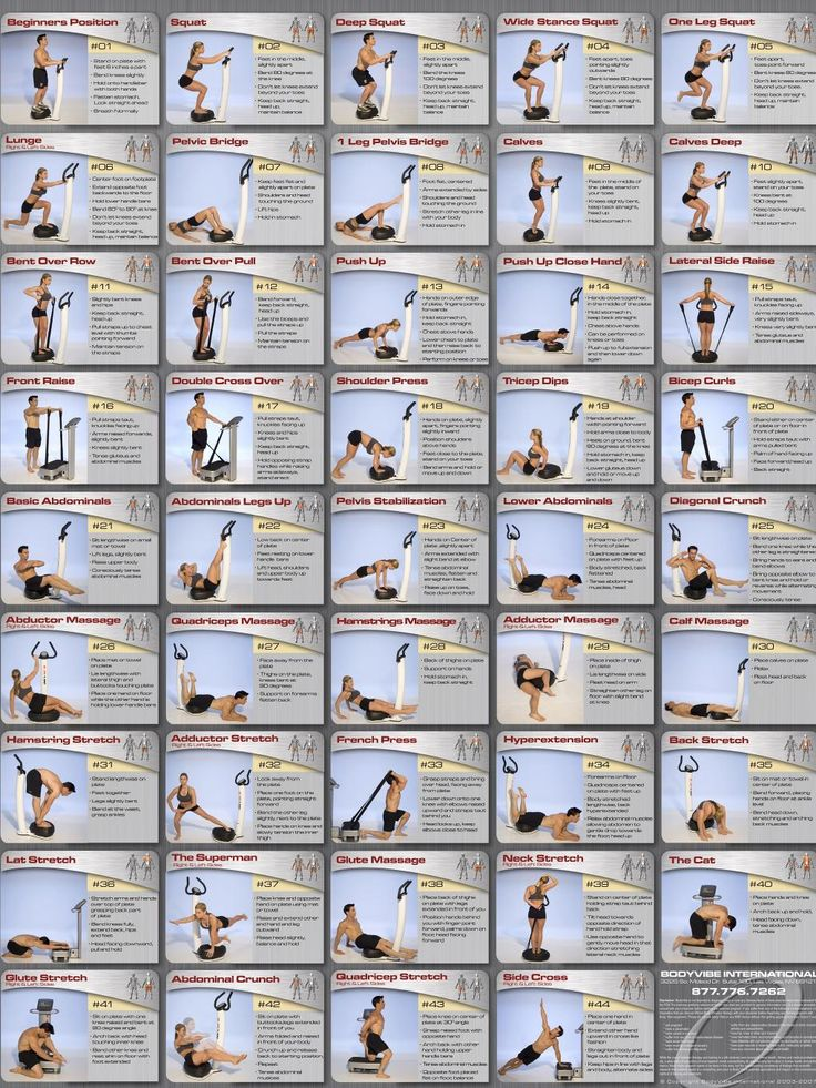 Whole Body Vibration Exercise Chart from http://howtoloseweightfaster.siterubix.com