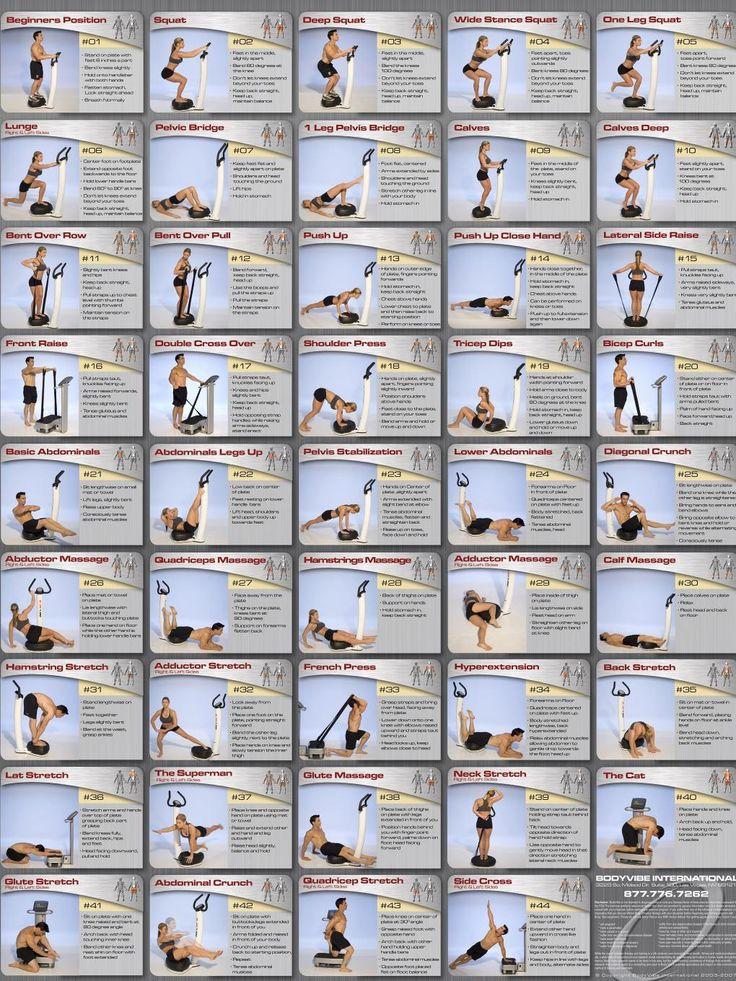 Whole Body Vibration Exercise Chart
