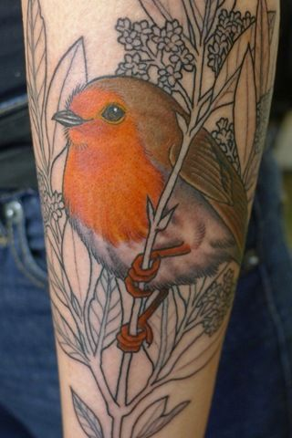 Love the contrast between the colour of the bird and the unfinished foliage... oh yeah, and the detail!
