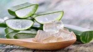 Aloe Vera Gel Forever da bere senza aloina, puro al 100% e biologico. Il migliore gel di Aloe Vera, famoso per i suoi benefici per salute, pelle e capelli