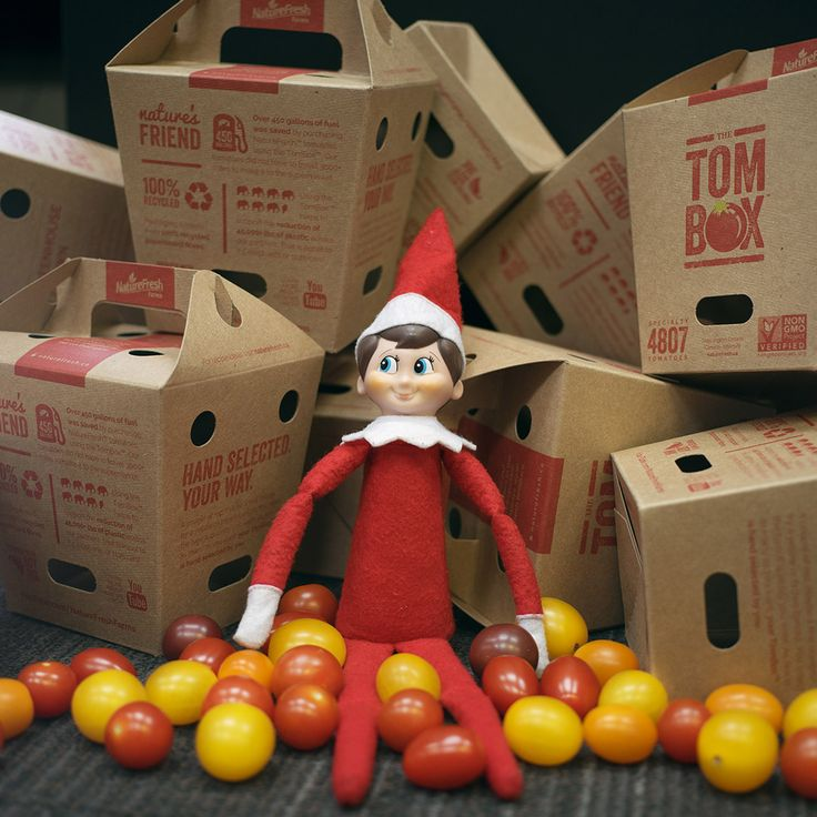 By using a TomBox™ that is made from 100% recycled material, we can save 45,000 pounds of plastic each year that was destined for a landfill. #Sustainability #ElfOnTheShelf