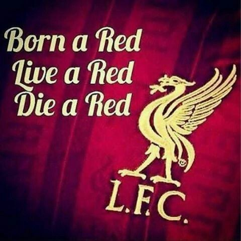 Born - live - die...! All red !!! #YouLLNeverWalkAlone. #liverpool #liverpoolfans
