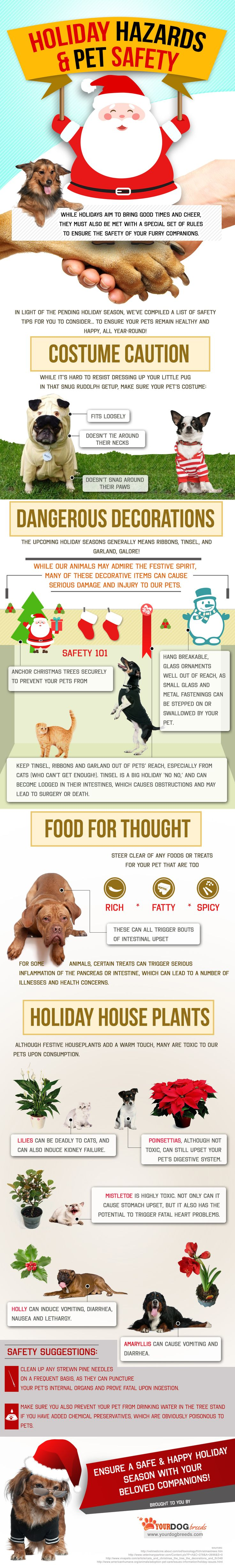 Hot weather - tips for keeping your cat cool
