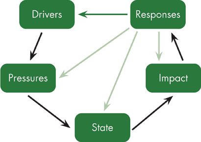 DPSIR Model  Drivers- Pressures- State- Impact- Responses The DPSIR model is used to measure the  impacts of environmental issues. For more information visit http://www.countrysidesurvey.org.uk/science-and-research/work-packages/integrated-assessment?page=2