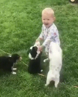So, brother, attack this little boy