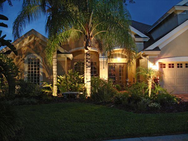 Landscape Lighting Palm Trees   Google Search