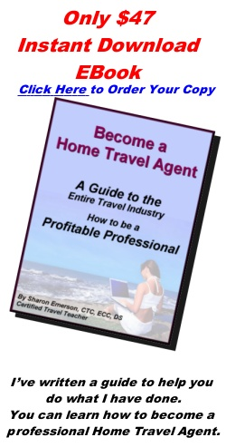 Mais de 25 ideias únicas de Online travel agent no Pinterest - travel agent job description