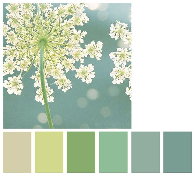 calm - this is what I'd like my bedroom to be :)  Love these colors!!