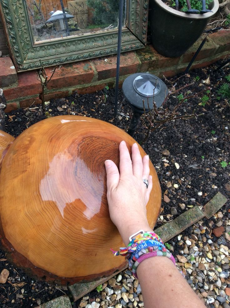 Large wooden toadstool