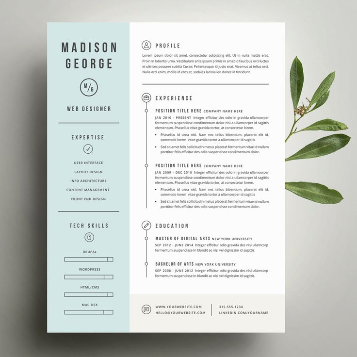 template resume free indesign download word design menu psd