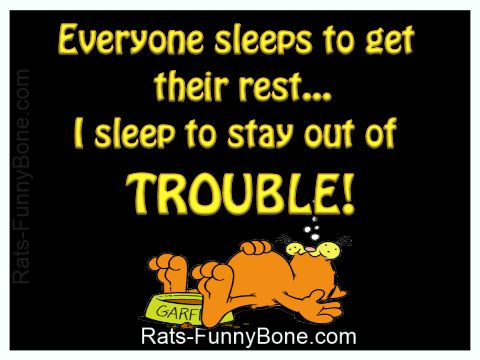 Funny Garfield Saying About Sleep Hello Garfield Funny Funny