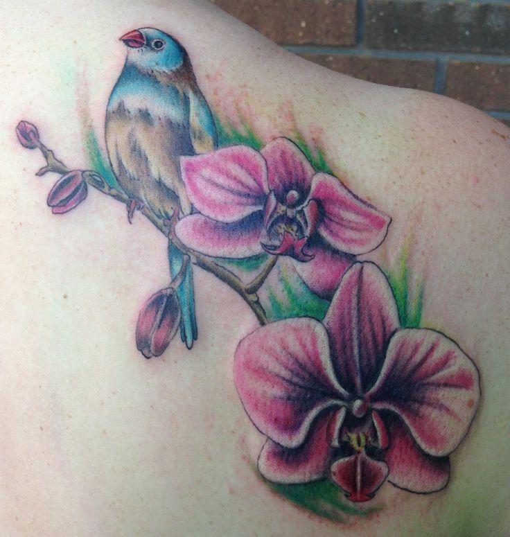 cordon bleu finch and orchid tattoo By Dani Felczak
