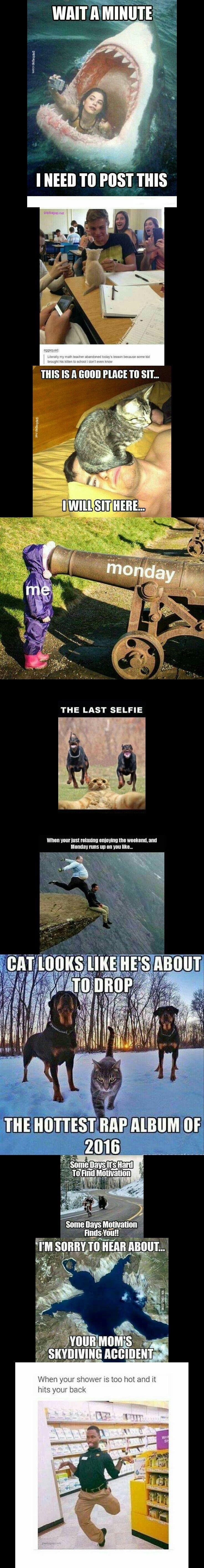 Top 10 Funniest Memes