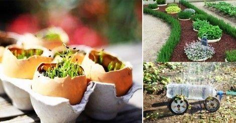 12+ingeniosos+trucos+de+jardinería