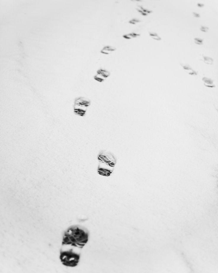 Prosjekt 365 / 4 #349 #onephotoaday #snow #winter #winterwonderland #kvinnherad #hildring #muradalen #bw #bwphotography  photo @jorunlarsen