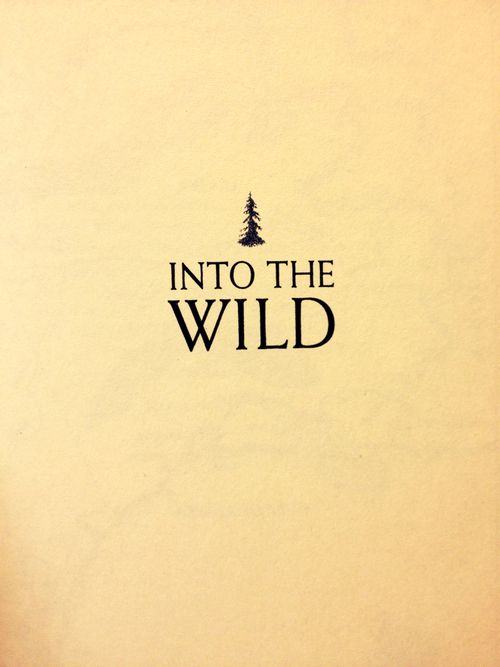 into the wild vocabulary Unit plan for teaching into the wild by jon krakauer – lesson plans, activities, questions, quizzes, tests, etc.