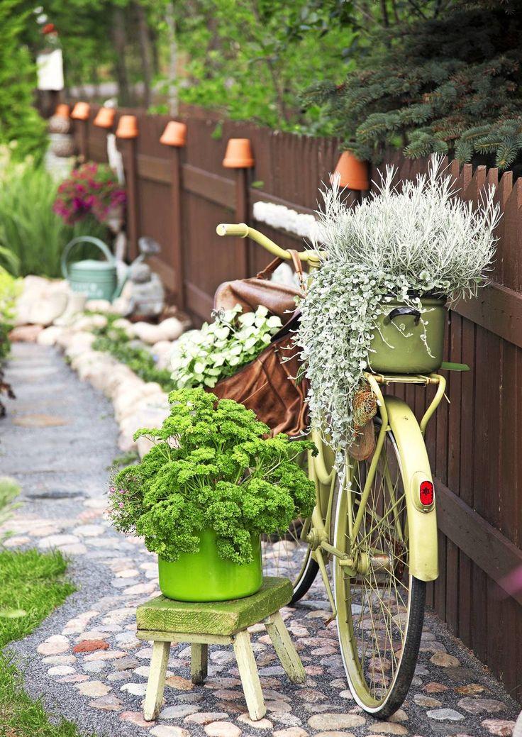 Satu Räikkösen puutarhassa itseideoidut betonikoristeet ja kierrätystavarat ovat olennainen osa puutarhan viehätystä. Lue Sadun puutarhan tarina ja anna karjalaisen elämänilon tarttua.