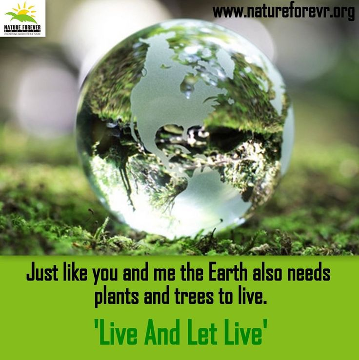 our pledge to save the earth A pledge to help save the planet  it is a sign of our commitment to the environment and society  we'll do everything possible within our capabilities to preserve and protect the earth .