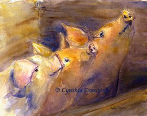 West Pigster Choir watercolor © Cynthia Crawford