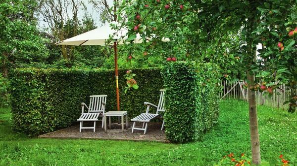 Если место отдыха спрятать за живыми стенами, уголок станет более живописным и... укромным.