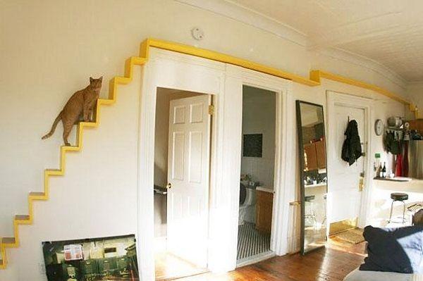 7- escada para gatos