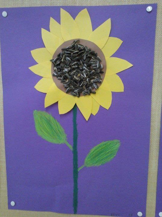 Auringonkukka, jonka keskustassa käytetty oikeita auringonkukansiemeniä. (Pirjo Koskinen)