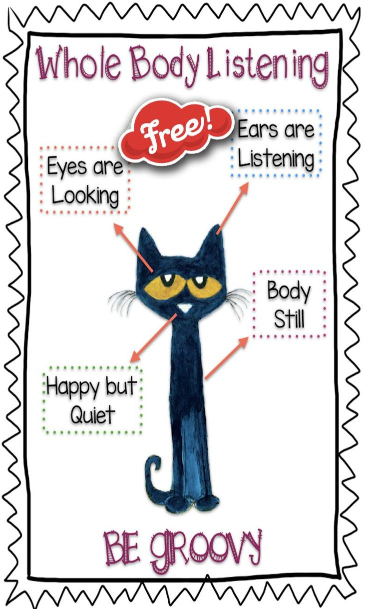 Decode your cats behavior 17 things your cat would love