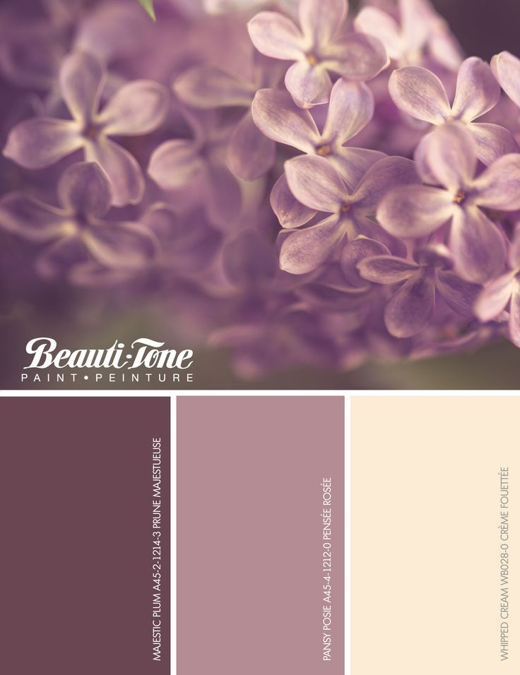 Breathe freshness into your #décor with #BeautiTone's floral fabulous palette. A spring bouquet of sophisticated mauves complimented with rich creams of natural beauty.