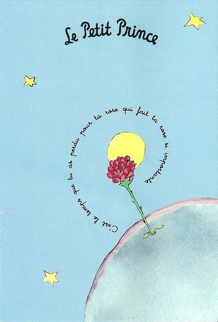"""C'est le temps que tu as passé pour ta rose qui fait ta rose si importante."" Beautiful symbolism of the rose in the book ""Le Petit Prince""."