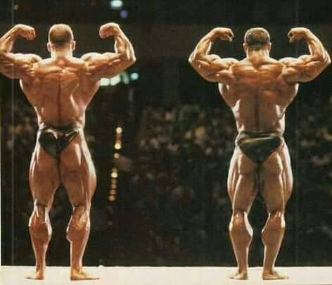 556 best images about Dorian Yates/bodybuilders on