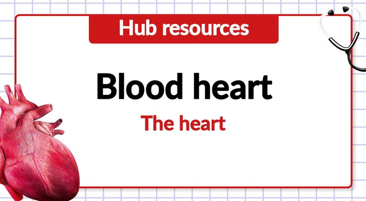 Free teaching resource - Year 6 - Non-chronological report on the heart: https://cornerstoneseducation.co.uk/free-teaching-resource-year-6-non-chronological-report-on-the-heart/