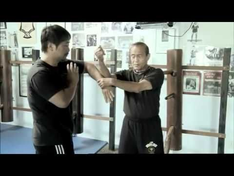 the best wing chun & Jeetkunedo Trapping techniques you will ever see - YouTube