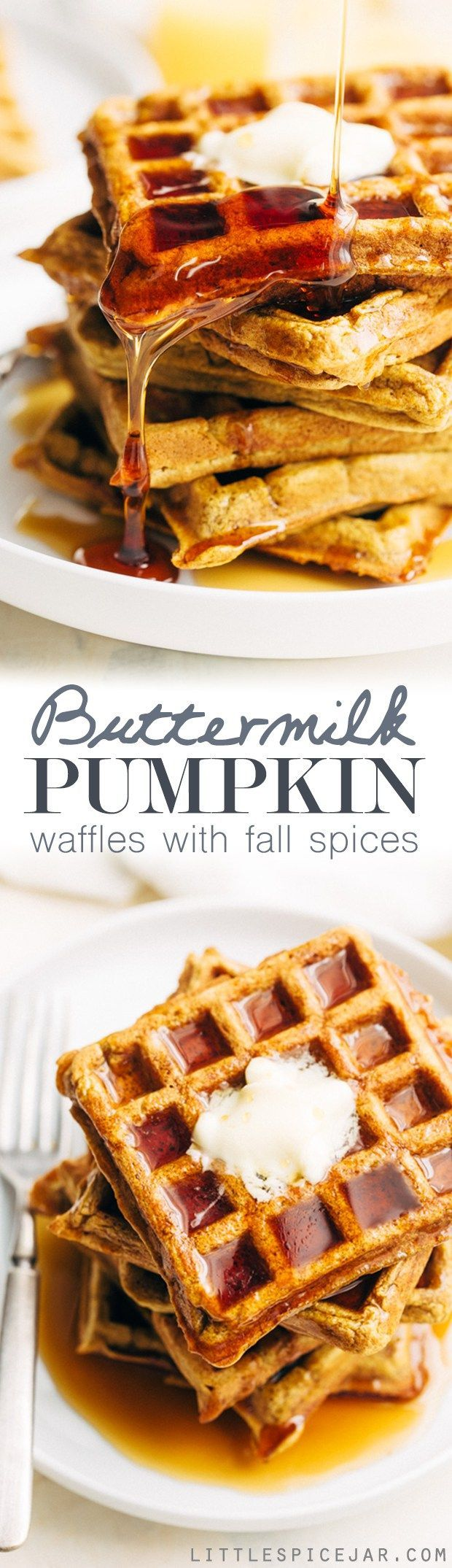 Buttermilk Pumpkin Waffles - The more tender and fluffy waffles that are spiced with fall flavors! Drizzled with maple syrup, they're perfect for fall breakfast! #waffles #pumpkinwaffles #buttermilkwaffles | http://Littlespicejar.com