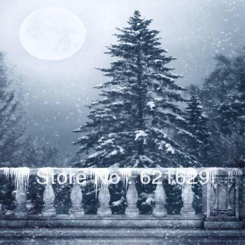 Снежная ночь 8'x8 'ср Компьютерная роспись Scenic Фотография Фон Фотостудия Фон DGX-167