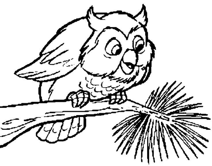 Vogel Auf Ast Ausmalbilder Kostenlos