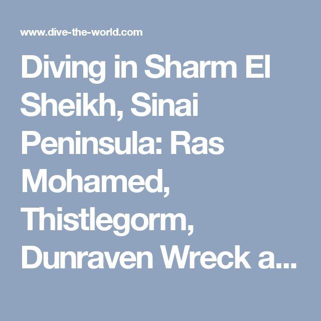 Diving in Sharm El Sheikh, Sinai Peninsula: Ras Mohamed, Thistlegorm, Dunraven Wreck and Tiran Strait - Red Sea, Egypt