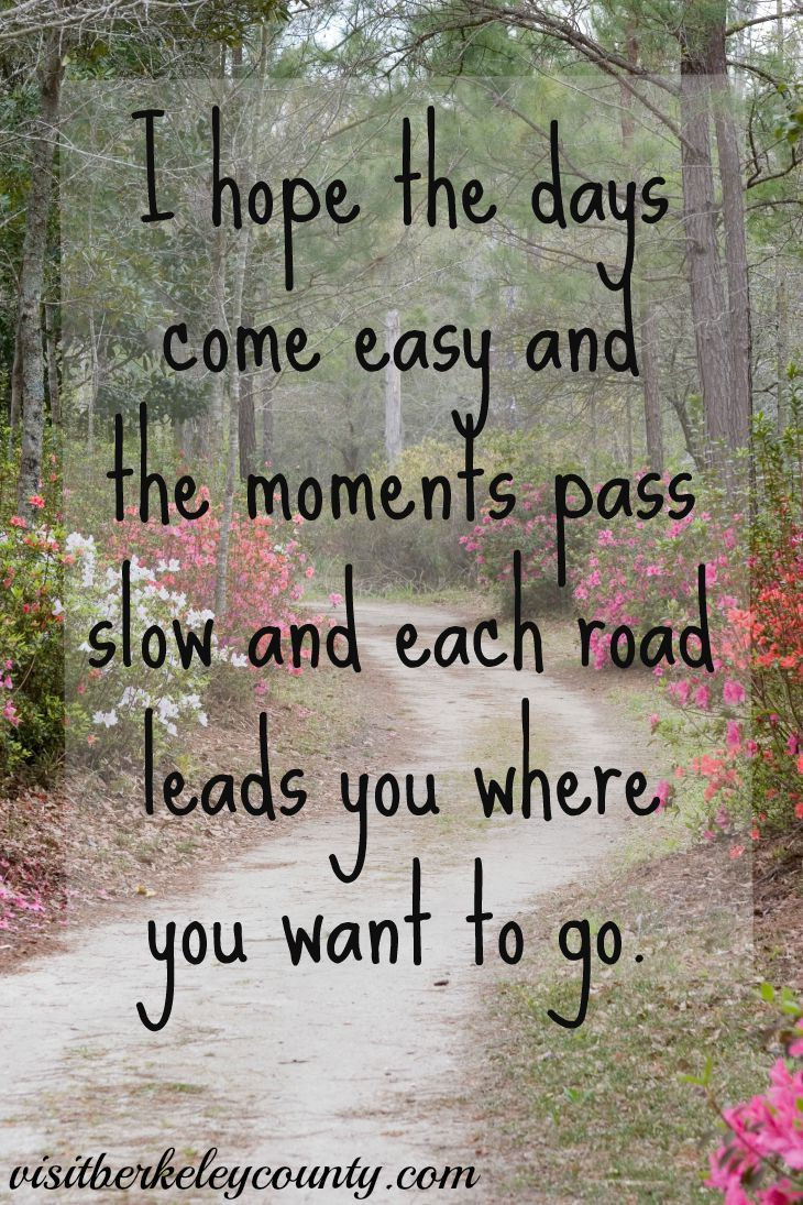 I hope the days come easy and the moments pass slow and each road leads you where you want to go. #southcarolina