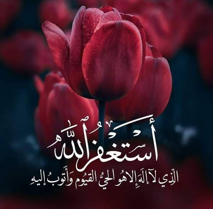 نصيحة لوجه الله تعالى لا تتخطى منشور إستغفار دون أن يكون لك نصيب فيه عسى أن يكون الفرج هنا يا Mothers Love Quotes Islamic Images Islamic Quotes Quran