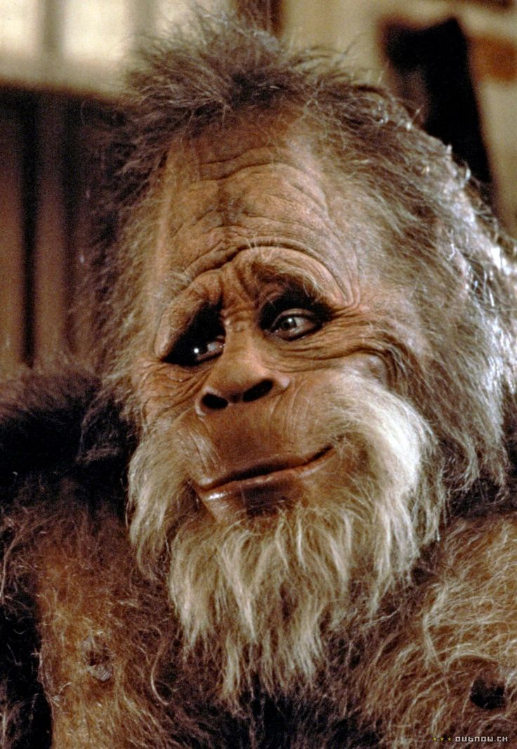 Harry and the Hendersons - Prop Replicas, Custom Fabrication, SPECIAL EFFECTS