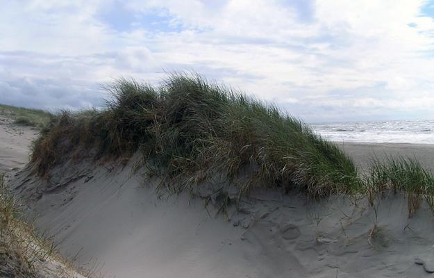 Ostseeheilbäder für Erholung am Meer mit einem einzigartigem Reizklima – MEINE VITALITÄT