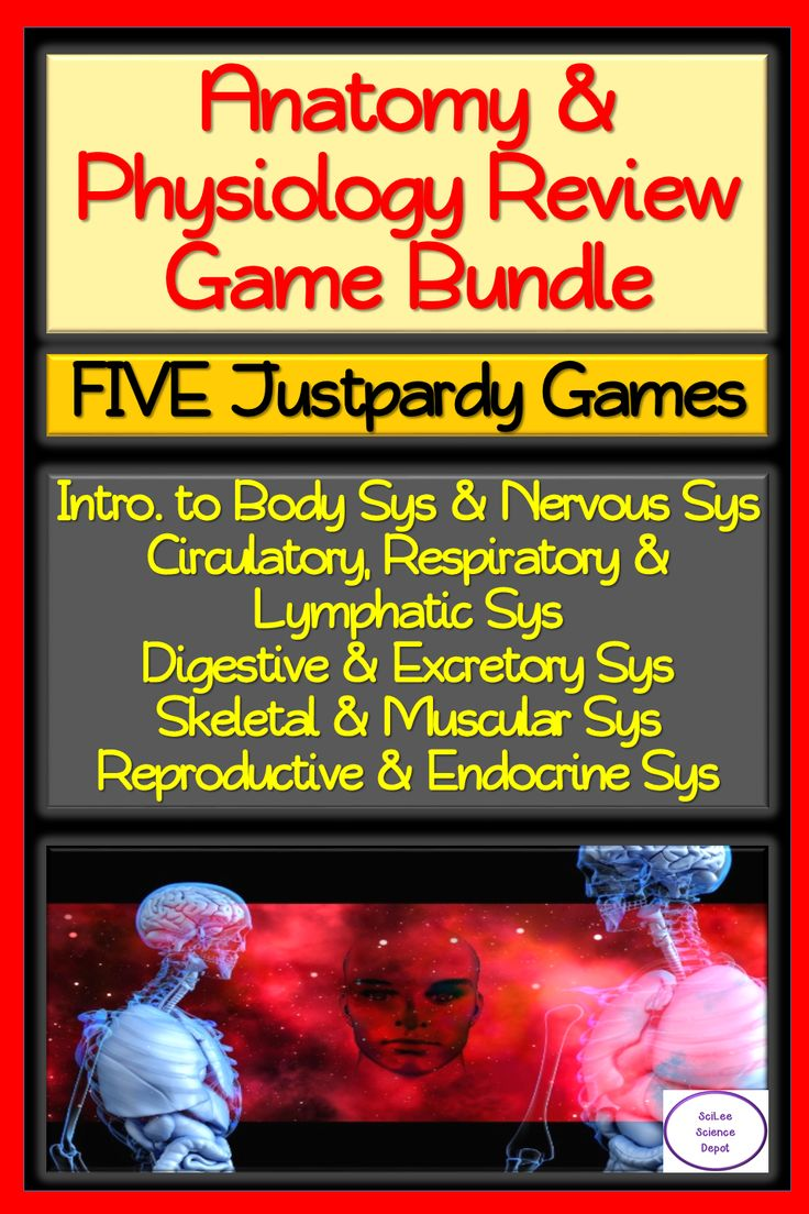 Anatomy Physiology Five Justpardy Review Game Bundle Anatomy And Physiology Physiology Science Lessons