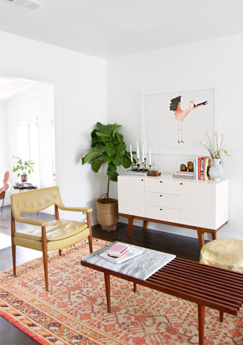 fiddle leaf fig tree and danish modern mid century furniture