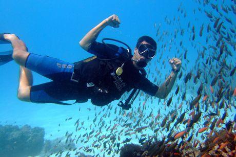 Scuba Diving on Zanzibar - experience Africa's underwater ...