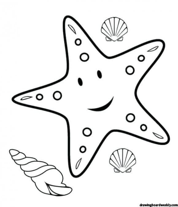 Starfish Coloring Page Beach Coloring Pages Animal Coloring Pages Fish Coloring Page