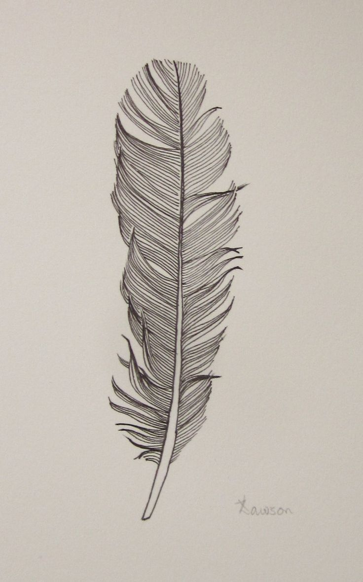 Black Feather 3 original ink drawing por AnneLawsonArt en Etsy