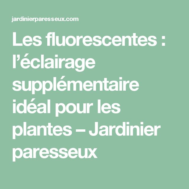 Les fluorescentes: l'éclairage supplémentaire idéal pour les plantes – Jardinier paresseux