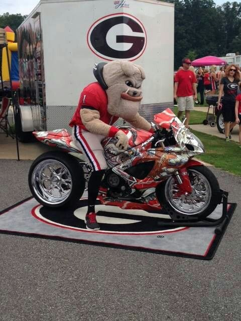 304 Best Images About Georgia Bulldogs On Pinterest
