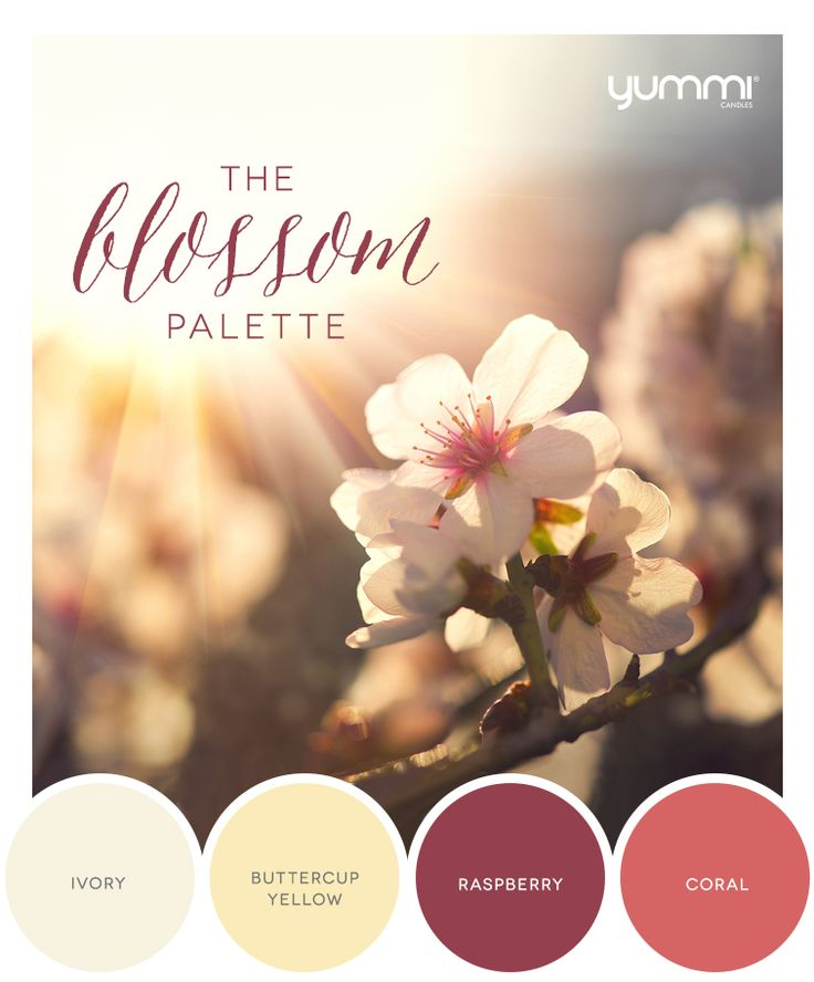 10% OFF The Blossom Palette! Use Promo Code BL10 At Checkout. Shop Now at…