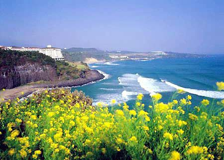 "Jeju Island of Korea. Dubbed as the ""Bali of North Asia""."